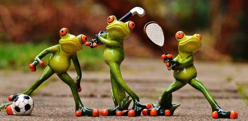 corporate identity design frogs olympics