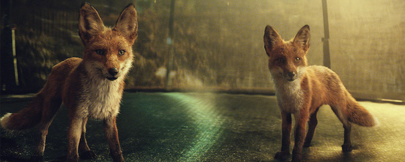 christmas advertising john lewis foxes